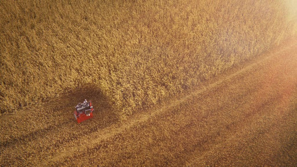 Wide top view CG rendering of a Deutz motor harvesting a wheat field.